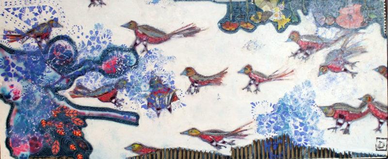 oiseaux 2019